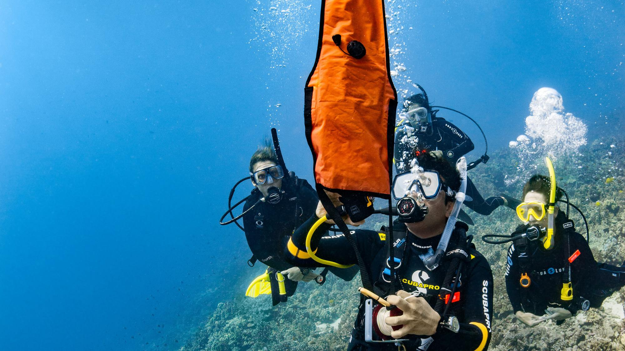 Delayed Surface Marker Buoy (DSMB) Diver - Specialty Course